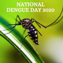National Dengue Day 2020