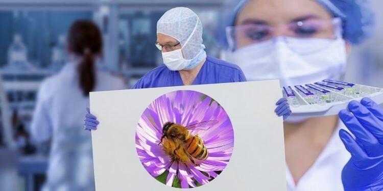 Covid 19 Honey bee